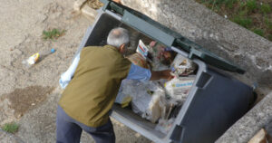 Buscando comida en un cubo de basura