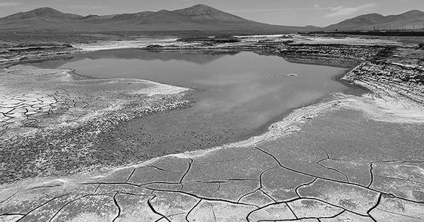 Laguna en el desierto de Atacama tras las lluvias. / Carlos González Silva