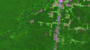 La imagen proporcionada por el Instituto Nacional de Investigaciones Especiales (INPE, por sus siglas en portugués) muestra zonas deforestadas en la región amazónica de Humaitá en julio de 2019. A partir de imágenes satelitales, el INPE anunció recienteme
