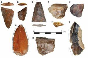 Estos son algunos de los fragmentos de piedra tallados para la caza y la pesca que se han encontrado en el yacimiento de Cooper's Ferry