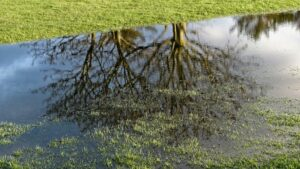 Inundación campo