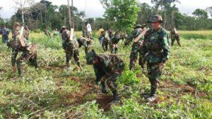 El Comando Estratégico Operacional de Bolivia (CEO) dedicado a la erradicación de los cultivos ilegales de hoja de coca