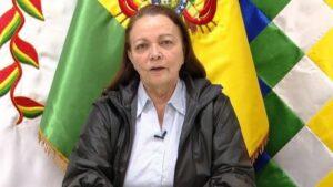 La ministra de Salud de Bolivia, Eidy Roca