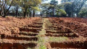 Tumbas excavadas en un cementerio para víctimas del coronavirus en Sao Paulo