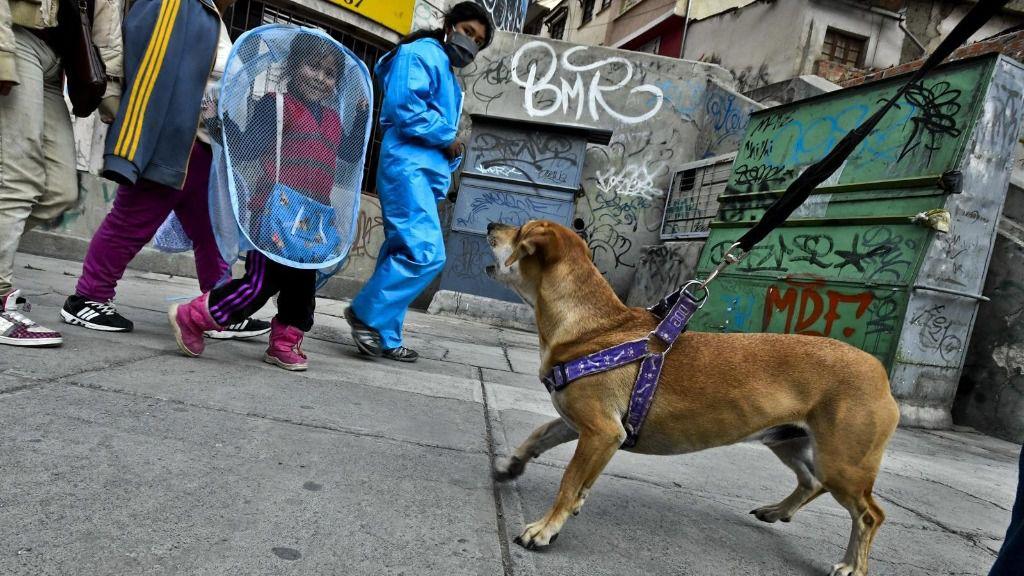 Coronavirus en La Paz, Bolivia