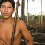 Muchas tierras indígenas han sido quemadas por ganaderos y madereros durante años, pero los incendios de 2019 están siendo especialmente devastadores. En la imagen Hemokomaá, un hombre awá, muestra su selva tras ser devorada por las llamas en 2010