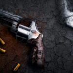 Los socialistas brasileños piden al Supremo cancelar los decretos de Bolsonaro para facilitar el uso de armas