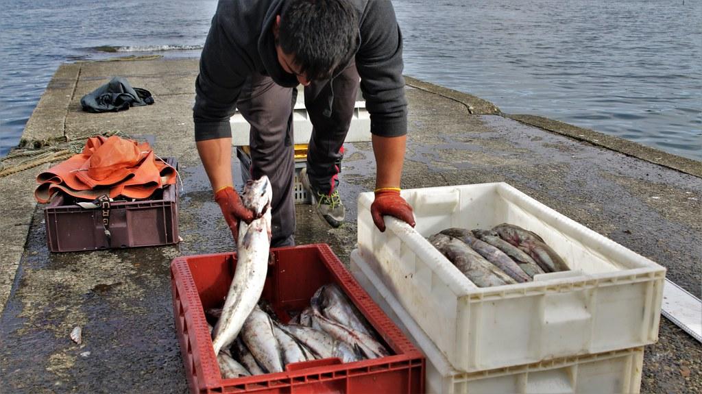 Pescador en Chile