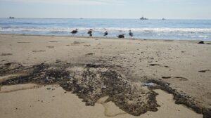 Vertido de crudo en California - ZENG HUI / XINHUA NEWS / CONTACTOPHOTO